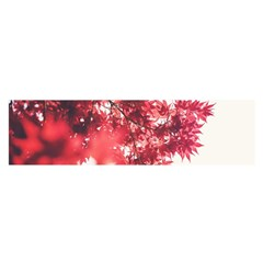 Maple Leaves Red Autumn Fall Satin Scarf (Oblong)