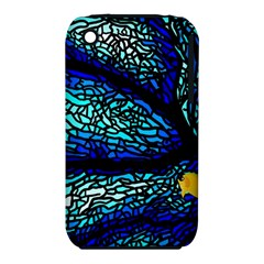 Sea Fans Diving Coral Stained Glass iPhone 3S/3GS