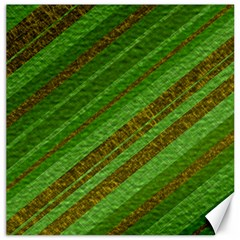 Stripes Course Texture Background Canvas 20  x 20