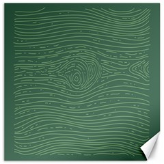 Illustration Green Grains Line Canvas 16  X 16