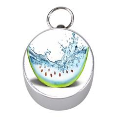 Fruit Water Slice Watermelon Mini Silver Compasses