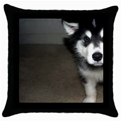 Alaskan Malamute Pup 3 Throw Pillow Case (Black)