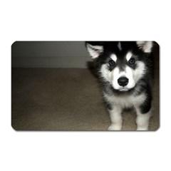 Alaskan Malamute Pup 3 Magnet (Rectangular)