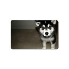 Alaskan Malamute Pup 3 Magnet (Name Card)