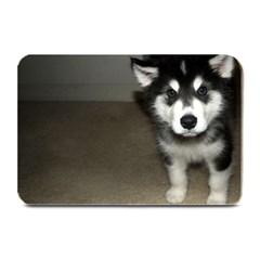 Alaskan Malamute Pup 3 Plate Mats