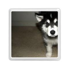 Alaskan Malamute Pup 3 Memory Card Reader (Square)