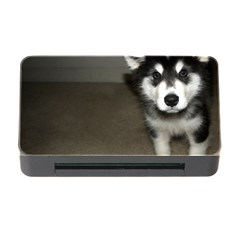 Alaskan Malamute Pup 3 Memory Card Reader with CF