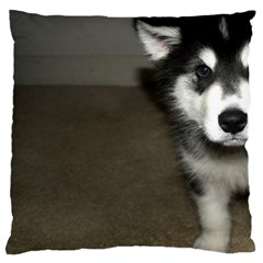 Alaskan Malamute Pup 3 Large Cushion Case (Two Sides)