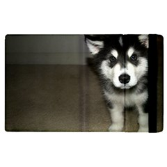 Alaskan Malamute Pup 3 Apple iPad 2 Flip Case