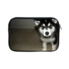 Alaskan Malamute Pup 3 Apple iPad Mini Zipper Cases
