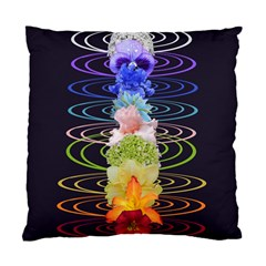 Chakra Spiritual Flower Energy Standard Cushion Case (two Sides)