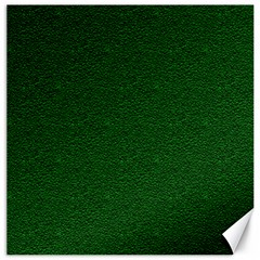 Texture Green Rush Easter Canvas 16  x 16