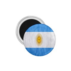 Argentina Texture Background 1.75  Magnets