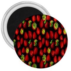 Berry Strawberry Many 3  Magnets