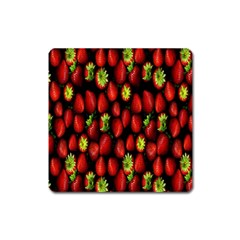 Berry Strawberry Many Square Magnet