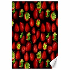 Berry Strawberry Many Canvas 20  x 30