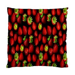 Berry Strawberry Many Standard Cushion Case (One Side)