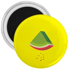 Fruit Melon Sweet Yellow Green White Red 3  Magnets