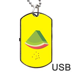 Fruit Melon Sweet Yellow Green White Red Dog Tag Usb Flash (two Sides)