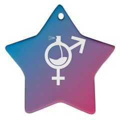 Perfume Graphic Man Women Purple Pink Sign Spray Star Ornament (Two Sides)