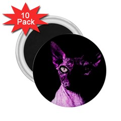 Pink Sphynx cat 2.25  Magnets (10 pack)