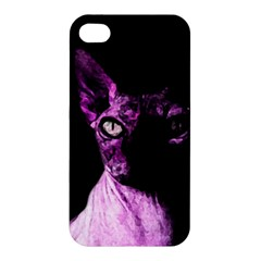 Pink Sphynx cat Apple iPhone 4/4S Hardshell Case