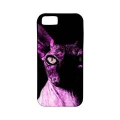 Pink Sphynx cat Apple iPhone 5 Classic Hardshell Case (PC+Silicone)