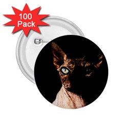 Sphynx cat 2.25  Buttons (100 pack)