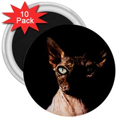 Sphynx cat 3  Magnets (10 pack)