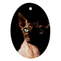 Sphynx cat Oval Ornament (Two Sides)