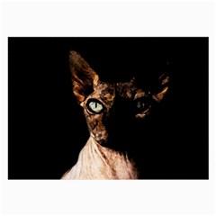 Sphynx cat Large Glasses Cloth (2-Side)
