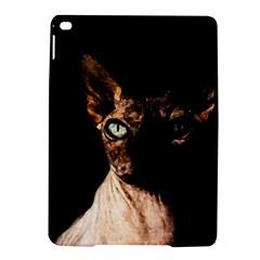 Sphynx cat iPad Air 2 Hardshell Cases