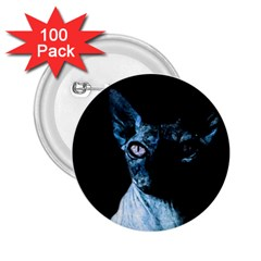 Blue Sphynx cat 2.25  Buttons (100 pack)