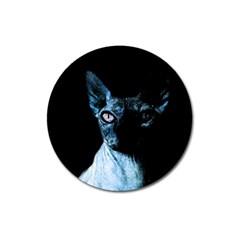 Blue Sphynx cat Magnet 3  (Round)