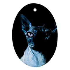 Blue Sphynx cat Oval Ornament (Two Sides)