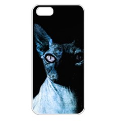 Blue Sphynx cat Apple iPhone 5 Seamless Case (White)
