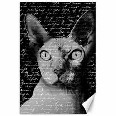Sphynx cat Canvas 20  x 30