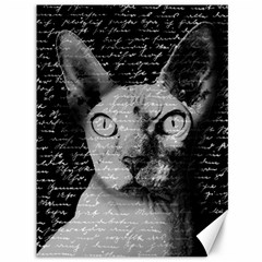Sphynx cat Canvas 36  x 48