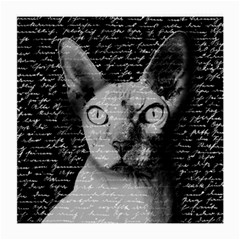 Sphynx cat Medium Glasses Cloth