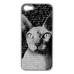 Sphynx cat Apple iPhone 5 Case (Silver)