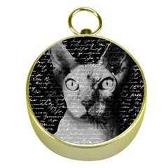 Sphynx cat Gold Compasses