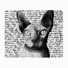 Sphynx cat Small Glasses Cloth