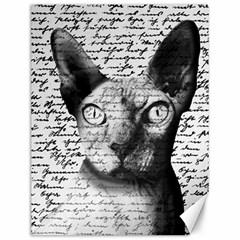Sphynx cat Canvas 12  x 16