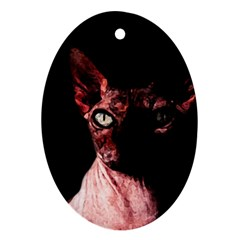 Sphynx cat Ornament (Oval)