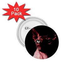 Sphynx cat 1.75  Buttons (10 pack)