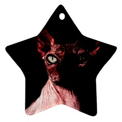 Sphynx cat Star Ornament (Two Sides)