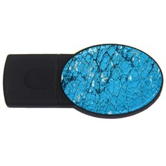 Surface Grunge Scratches Old USB Flash Drive Oval (2 GB)