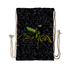 Mantis Drawstring Bag (Small)