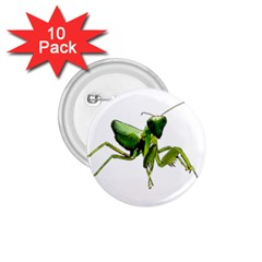 Mantis 1.75  Buttons (10 pack)