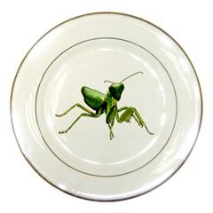Mantis Porcelain Plates